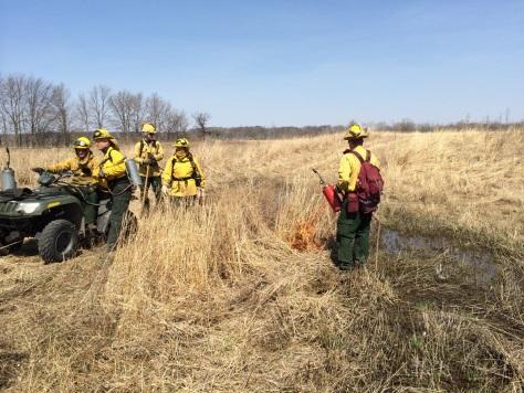 crews begin burn
